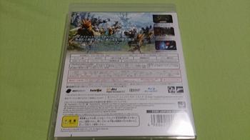 DSC_0123 (800x450).jpg